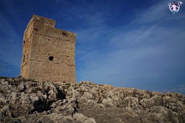 torre palane 10