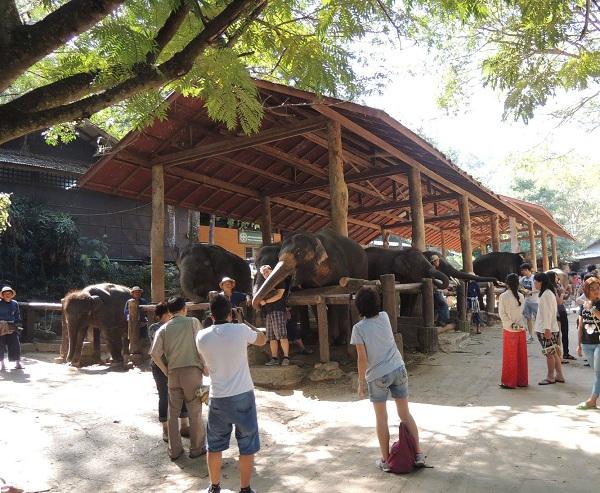 Storia cultura e tradizioni della Thailandia