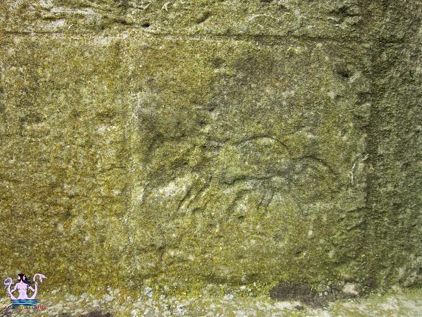 segni e graffiti del Salento 2