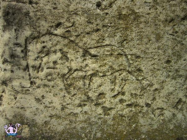 segni e graffiti del Salento 3
