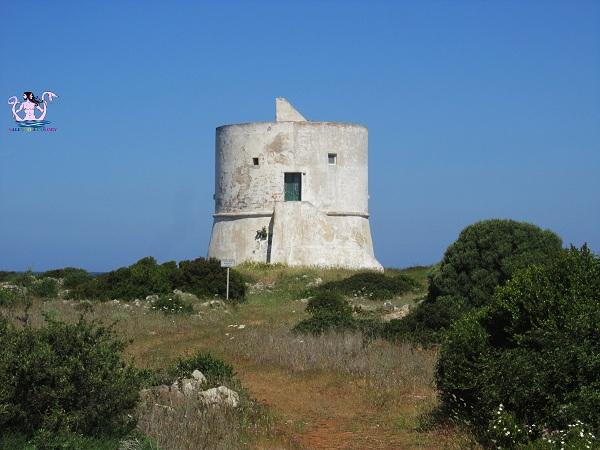 Parco naturale regionale Isola di Sant'Andrea e litorale di Punta Pizzo 11