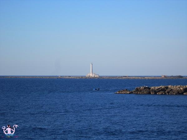 Parco naturale regionale Isola di Sant'Andrea e litorale di Punta Pizzo 2