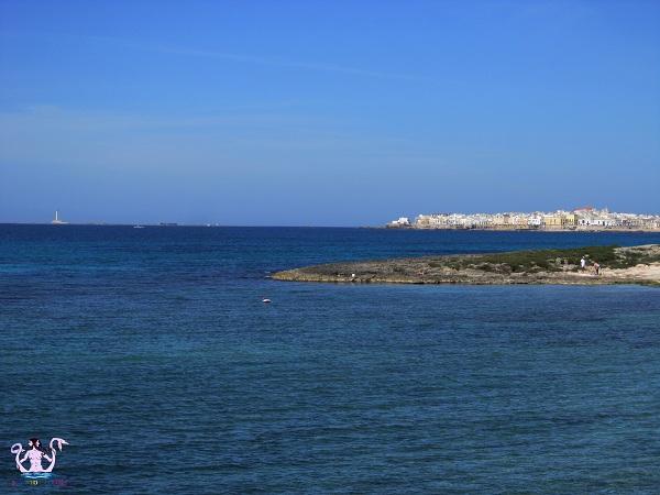 Parco naturale regionale Isola di Sant'Andrea e litorale di Punta Pizzo 3