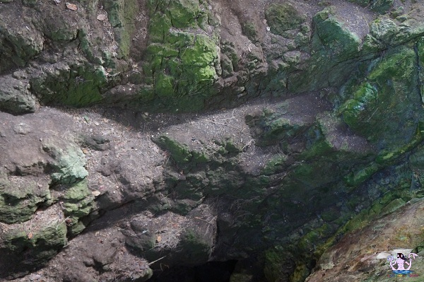 grotte preistoriche del salento cosma 2