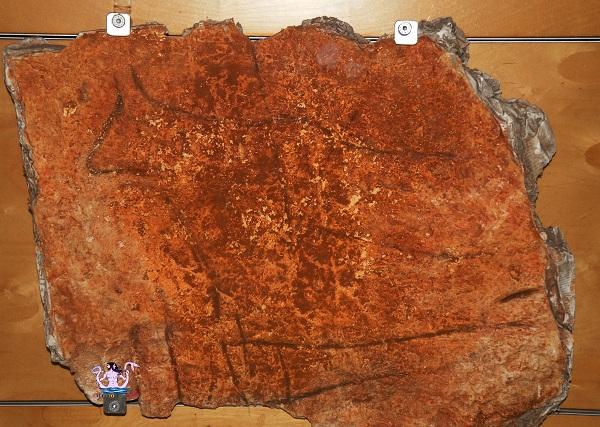 grotte preistoriche del salento romanelli 4