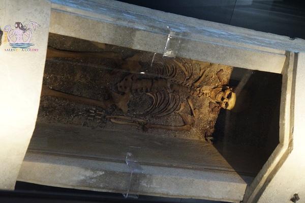 museo archeologico di taranto 18