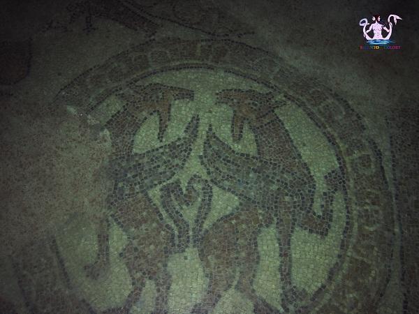 il-mosaico-medievale-di-brindisi-3