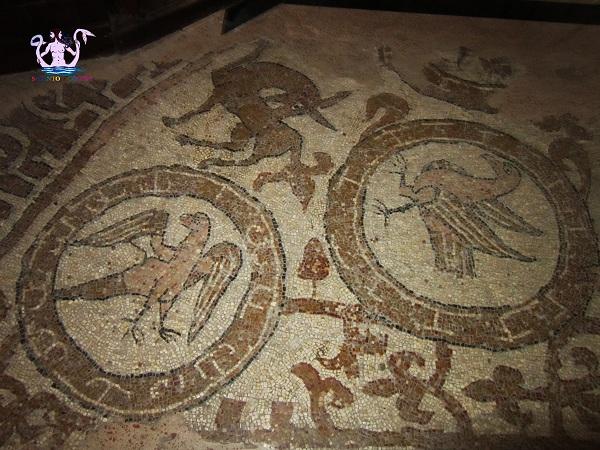 il-mosaico-medievale-di-brindisi-4