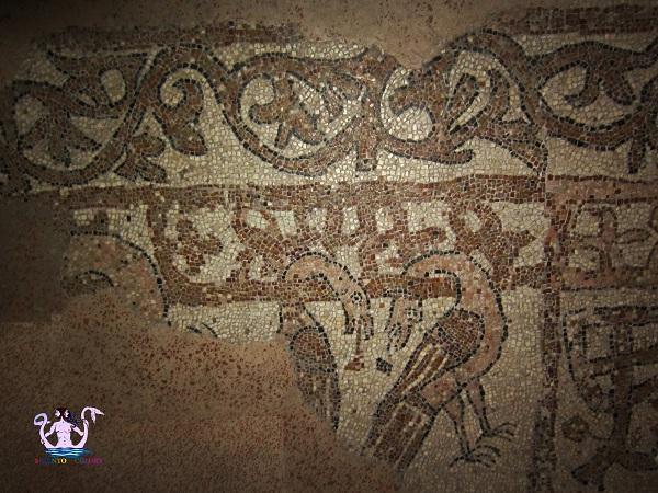 il-mosaico-medievale-di-brindisi-5