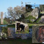 Lungo la via del Santuario di Montevergine