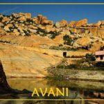India, le meraviglie di Avani