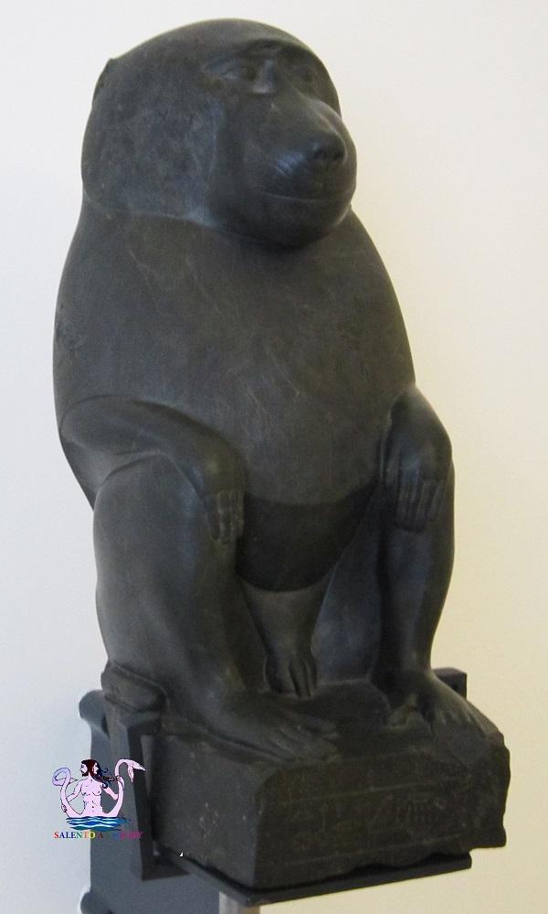 Thoth, il dio egizio ritrovato a Porto Cesareo