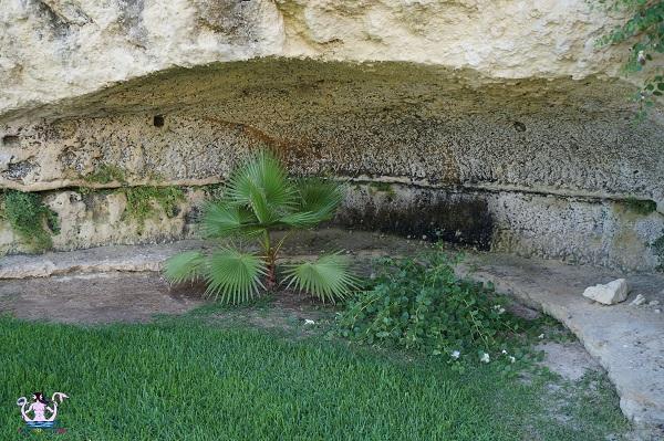 Il paesaggio rupestre di Masseria Panareo