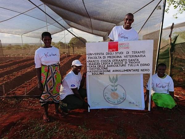 marcia del seme incontra l'africa