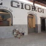 L'antica distilleria De Giorgi di San Cesario
