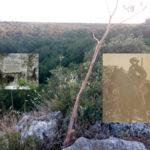 Nel bosco selvaggio del Sergente Romano