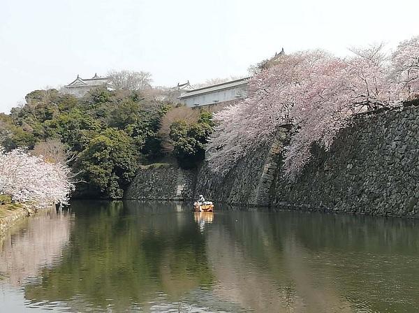 La sezione sud-occidentale del Giappone